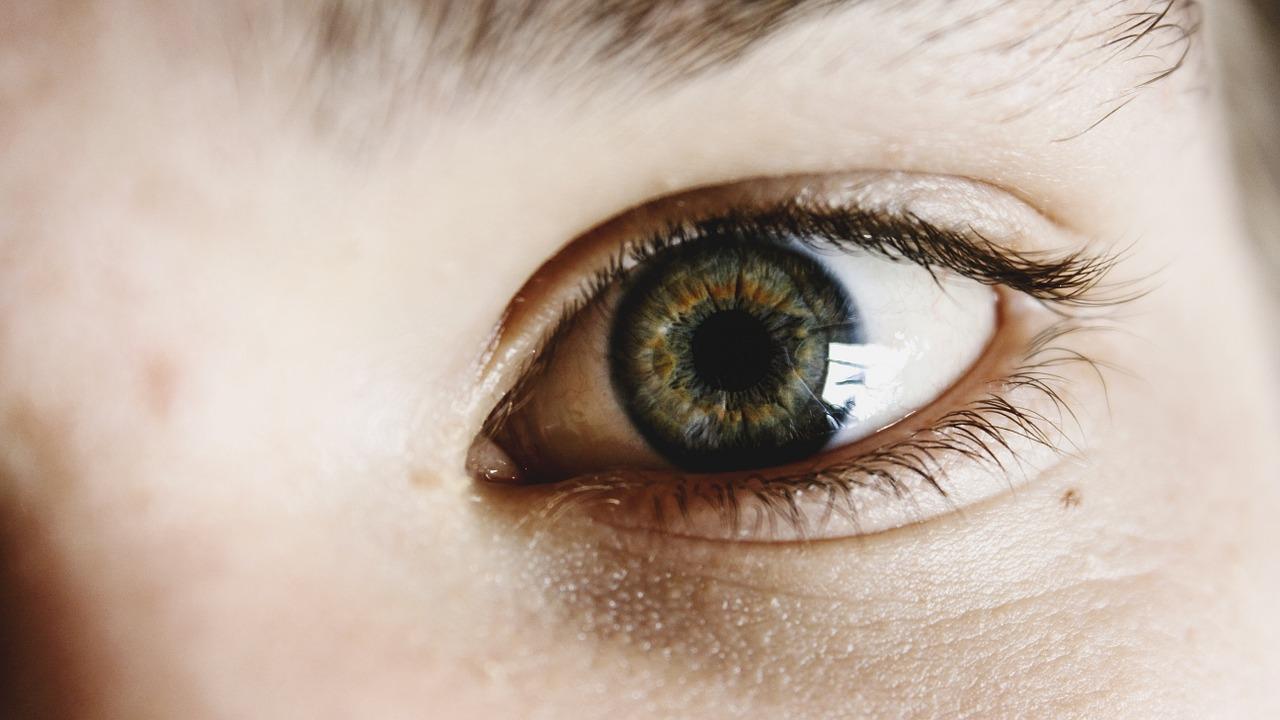 El brillo de sus ojos