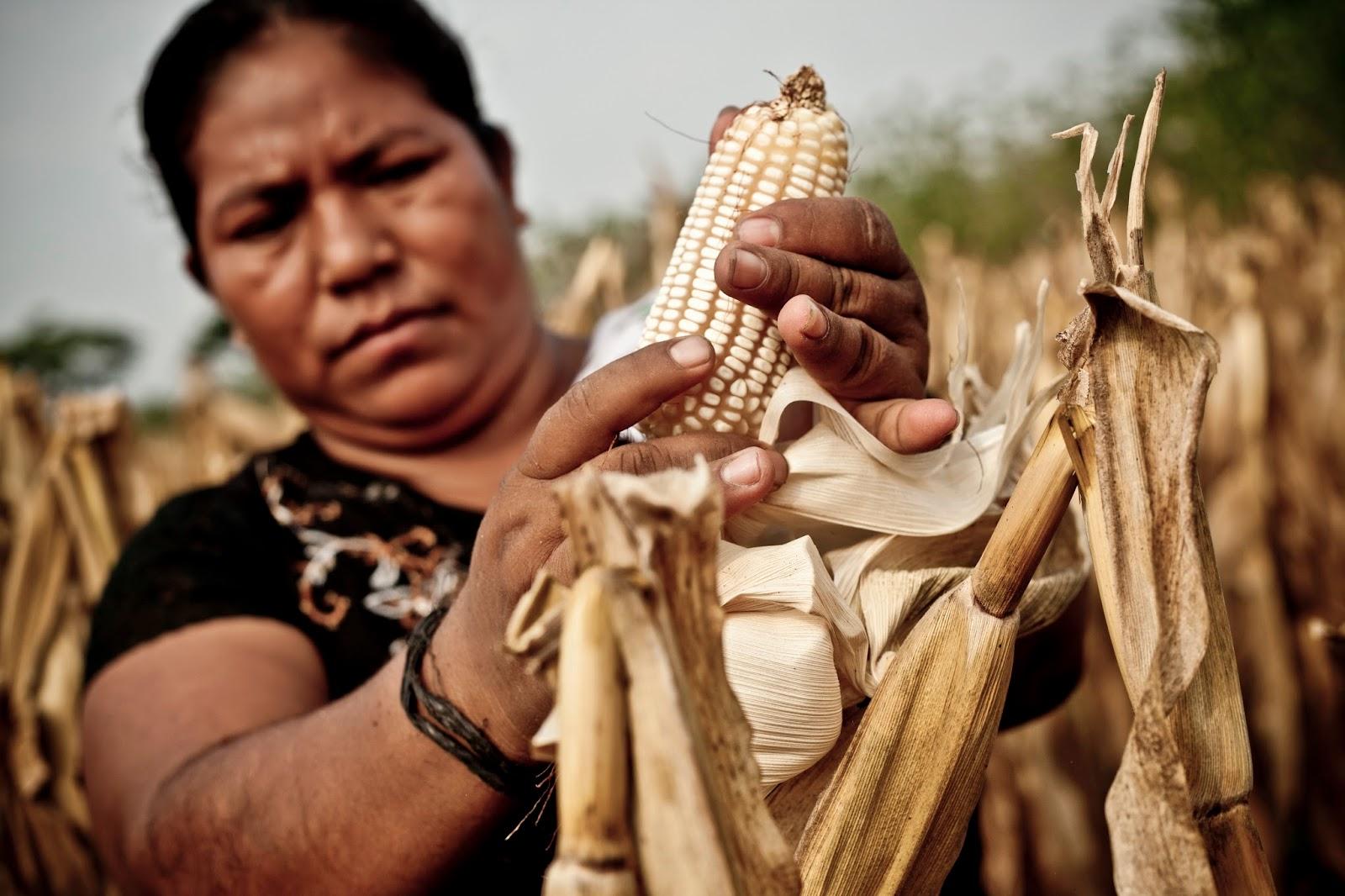 8 de marzo,Día de conmemoración de la Mujer trabajadora