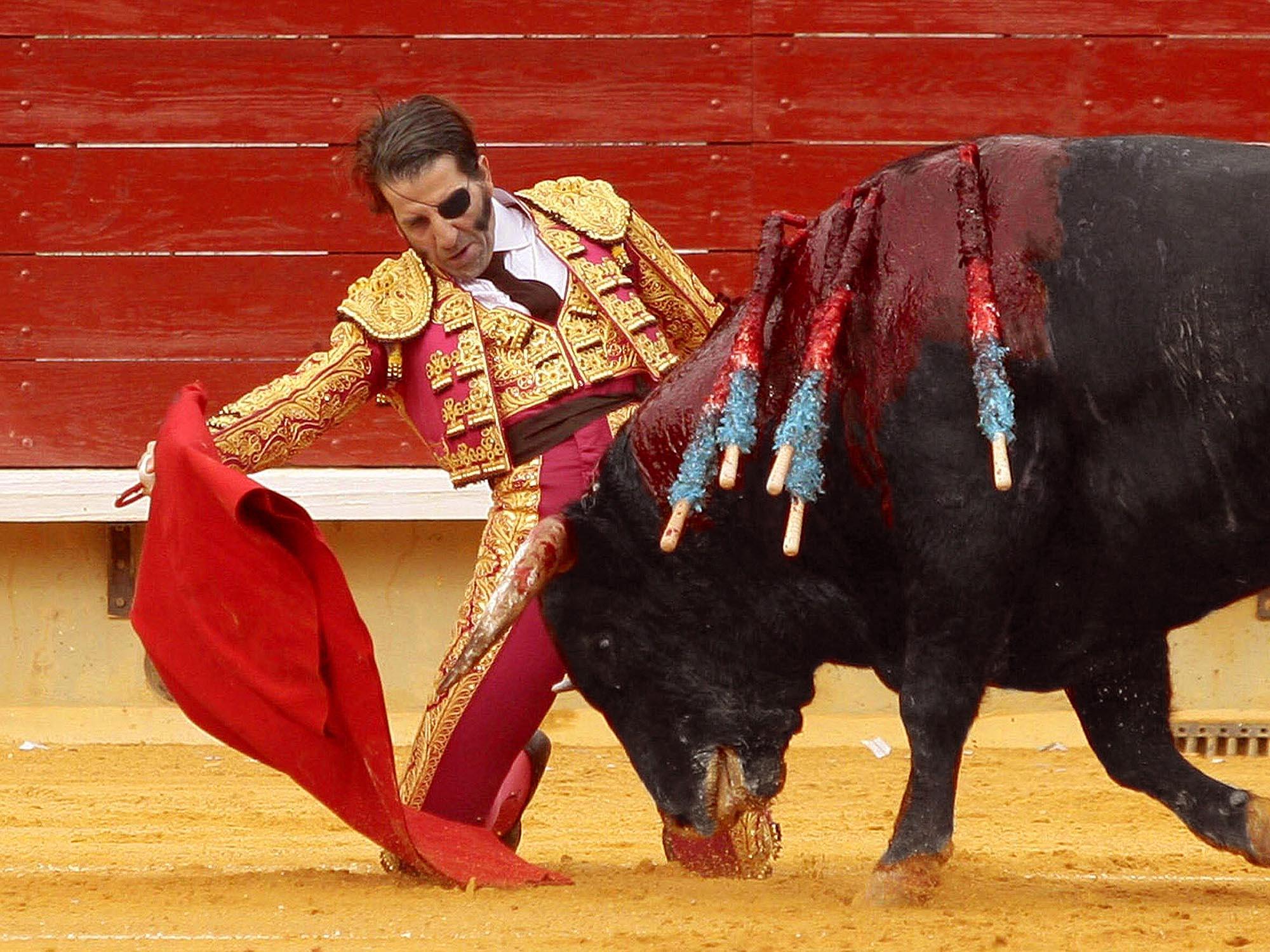 Desgraciada la bestia humana que maltrata a un animal
