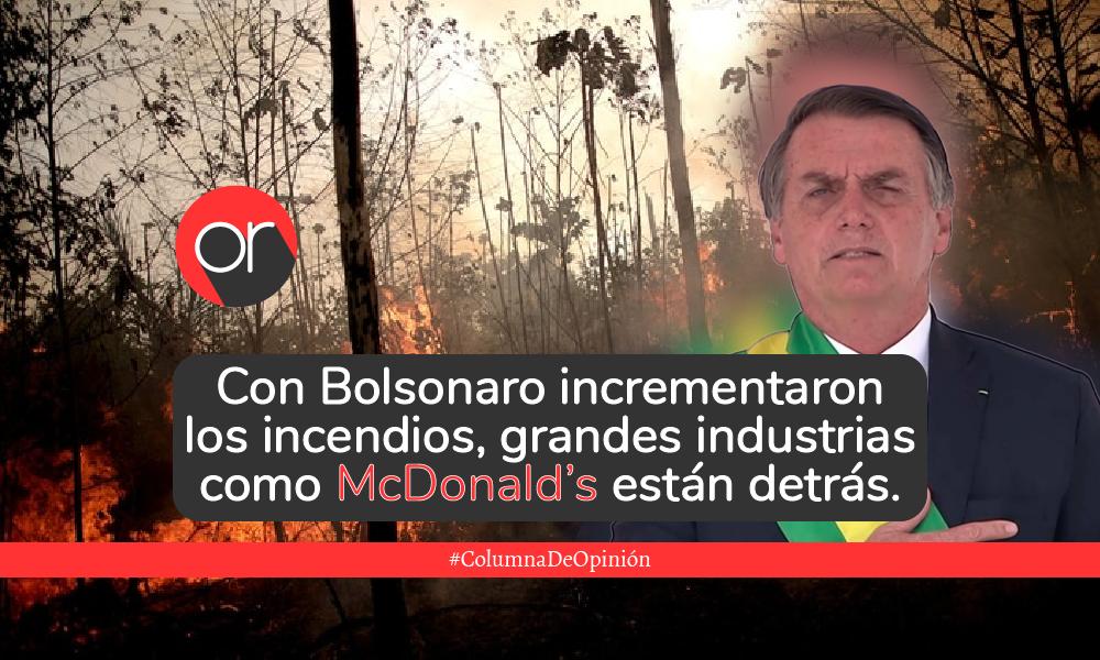 El ABC de lo que pasa en la Amazonía del cono Sur