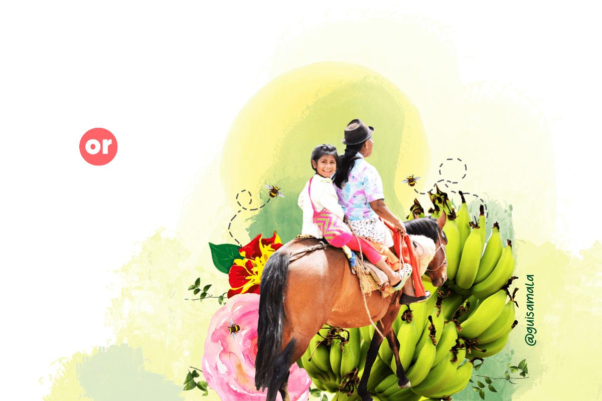 Cauca Cultiva La Paz: el catálogo de los productos de la reincorporación